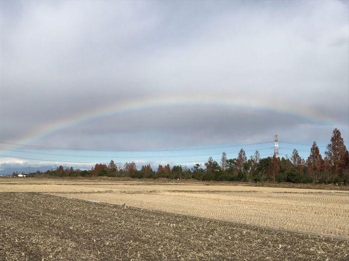虹が出ました!