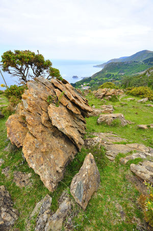 coast of death in galicia spain SPAIN Coast Of Death Galicia Spain Beauty In Nature Close-up Coast Of Death In Galicia Spain Day Grass Landscape Moss Mountain Nature No People Outdoors Rock - Object Scenics Sea Sky Tranquil Scene Tranquility Water