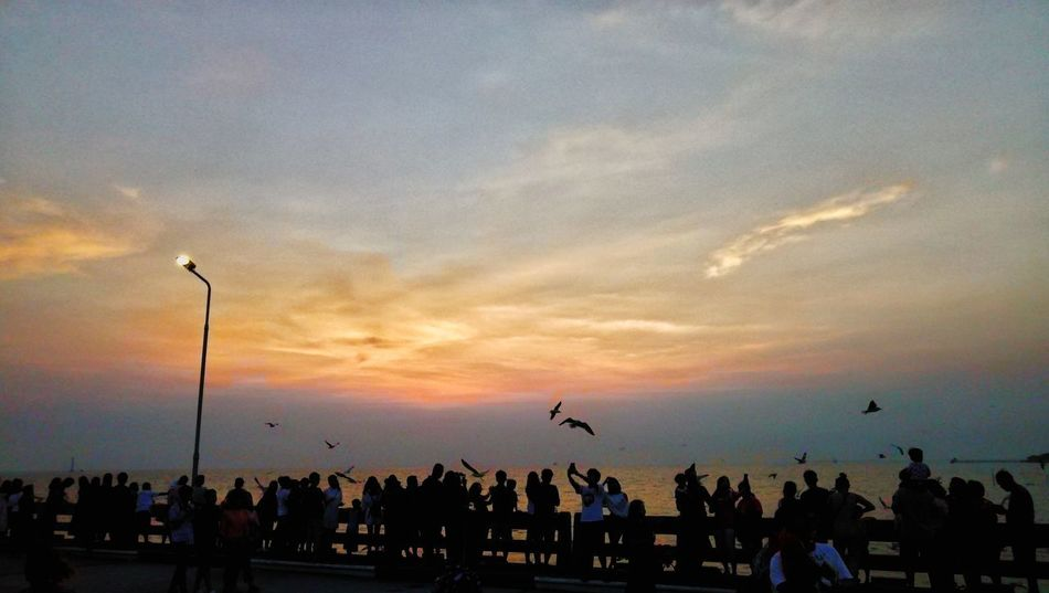 Bangpu Recreation , Samut Prakan province, Thailand BangPu Recreation Center Seagull Bangpu Samutprakarn In Thailand Sunset Silhouette Large Group Of People Sky Cloud - Sky Outdoors People Nature Bird Adult Travel Destinations