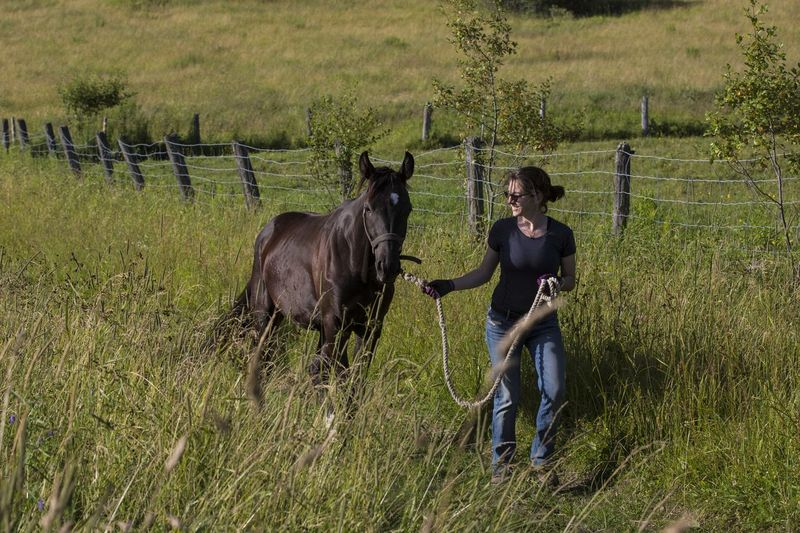 Smiling Young Woman With Horse Walking On Grassy Field