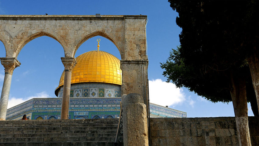 Arch Architecture Built Structure Clear Sky Day Dome Of The Rock Dome Of The Rock Jerusalem Low Angle View No People Outdoors Sky Travel Destinations Tree An Eye For Travel The Architect - 2018 EyeEm Awards