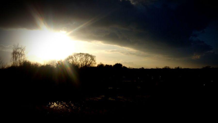 Sonnenuntergang Tree Sunlight Sunset Sun Sunbeam Sky Landscape Dramatic Sky Shining Lightning Romantic Sky Cloudscape