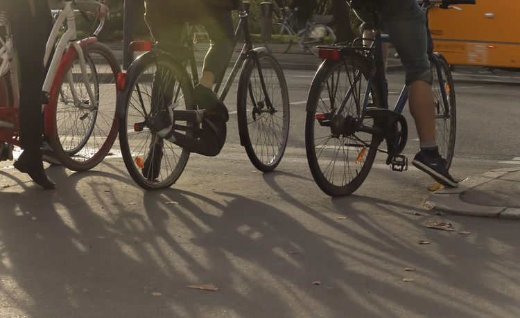 Bicycle Bicycles Cycling Day Leisure Activity Mode Of Transport Parking Riding Shadows Street Transportation