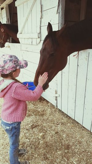 Child Horse Horse Love Horsepassion Horsegirlsdoitbetter Horse Life Horsegirl Capture The Moment Country Life Human Hand Human Body Part Two People Lifestyles Child Childhood Togetherness Human Arm People Playing Outdoors Day Social Issues Adult