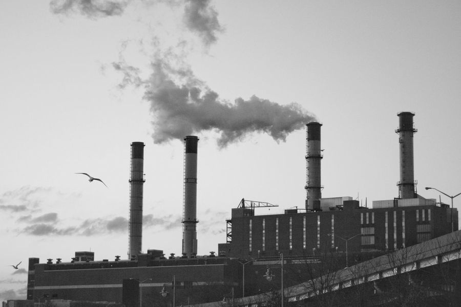 New York New York City EyeEm Best Shots Factory Smoke - Physical Structure Industry Environment Smoke Stack EyeEm Gallery Eyemphotography Birds In Flight Nopeople Industrial Photography Outdoors❤ Cold Outside Cooling Tower Industrial Building  Day Sky Nyphotographer Nycphotography Nyclife NY Eyeem Market EyeEmNewHere