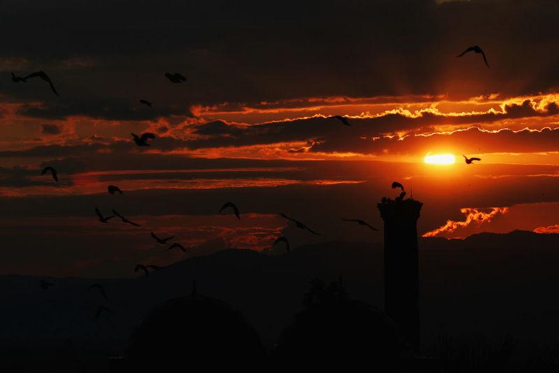 Sunset at Isa