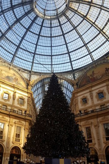 Shopping Mall christmas tree christmas tree Christmas Decoration Blue Sky Galleria Vittorio Emanuele Duomo Duomo Di Milano Dome Ceiling Window Architecture Built Structure Sky Architectural Design