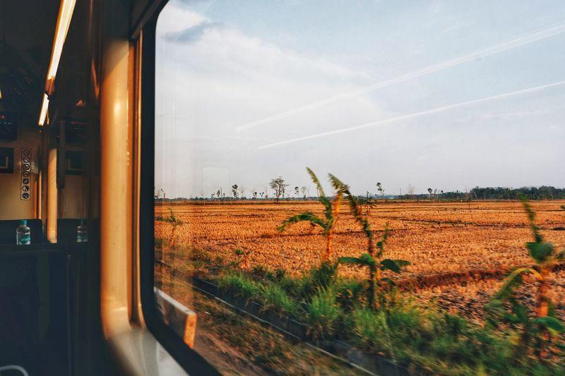 Scenic view of field seen through train window