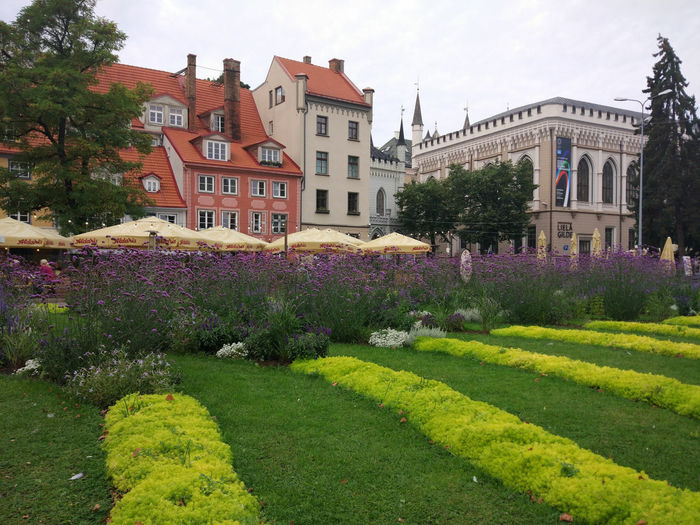 Flower Flowerbed Architecture Building Exterior Outdoors Travel Destinations Plant No People Yellow Springtime Day Sky Royal Person Entrance Cityscape Prague Clear Sky Architecture City Arch