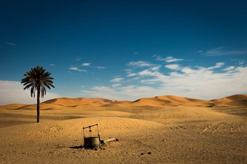 Sahara desert |
