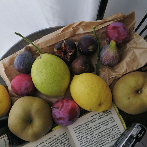 fruit and book