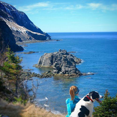 Newfoundland Parks Canada Greengardens Ocean View Rocky Coastline Adventure Buddies A Girl And Her Dog Adventure Club