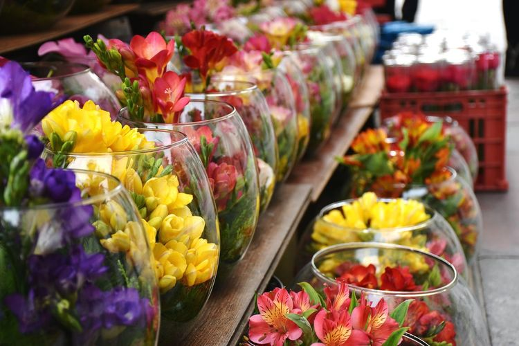 Close-up of colorful flowers in market