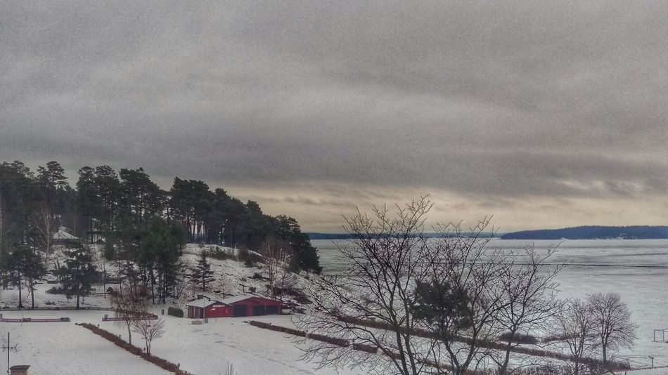 It's Cold Outside Kolmården Houses Village Winter Scene Snow Covered View January Winter EyeEm Gallery Sweden Scandinavia Scandia Northern Europe Snow Snow ❄ Nature