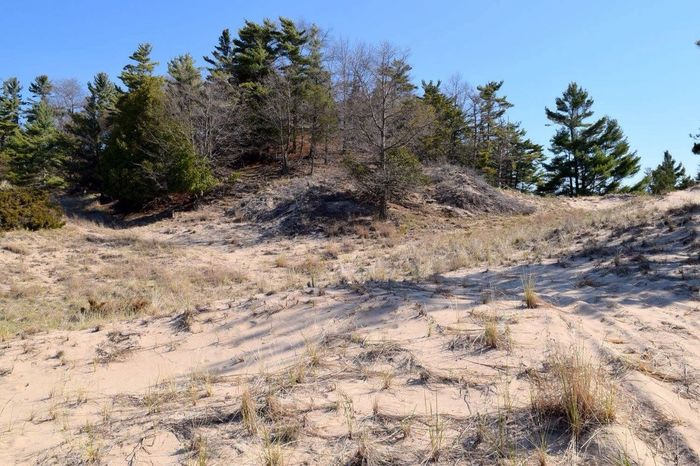 Michigan Ludington Nature Dunes