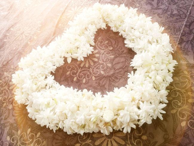 mogra flowers eyeem