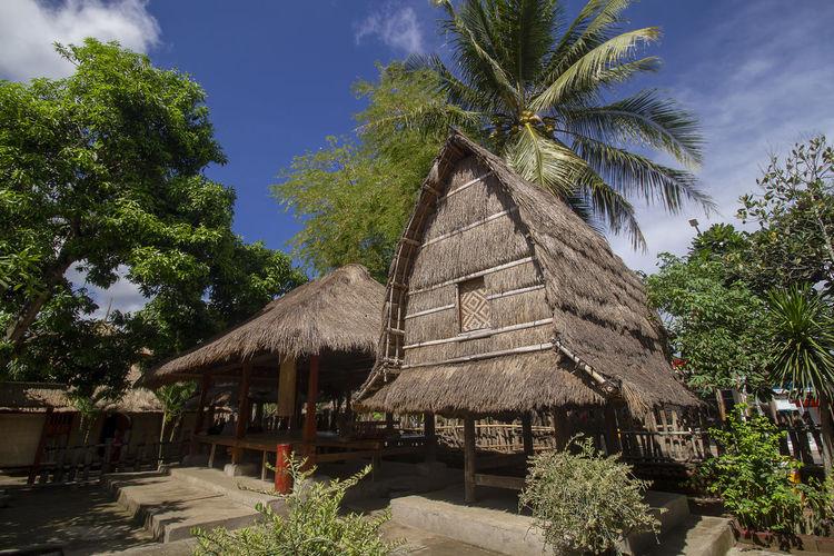 sasak tribe