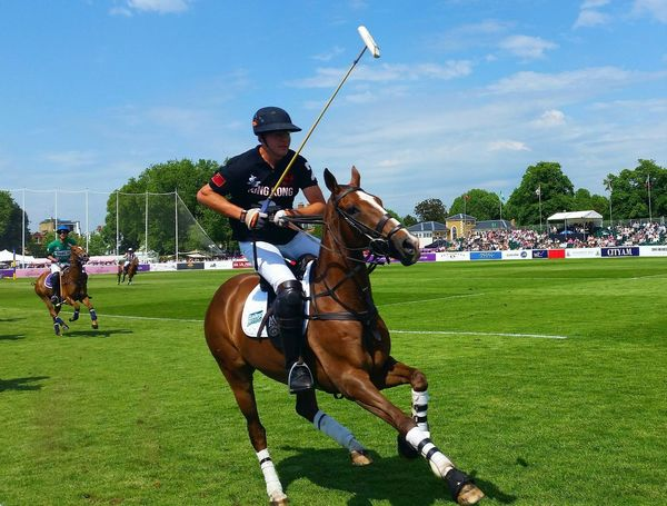 Polo Hurlingham Sports Event  Horse Horseback Riding Playing Polo Players Sport Outdoors Action Sports