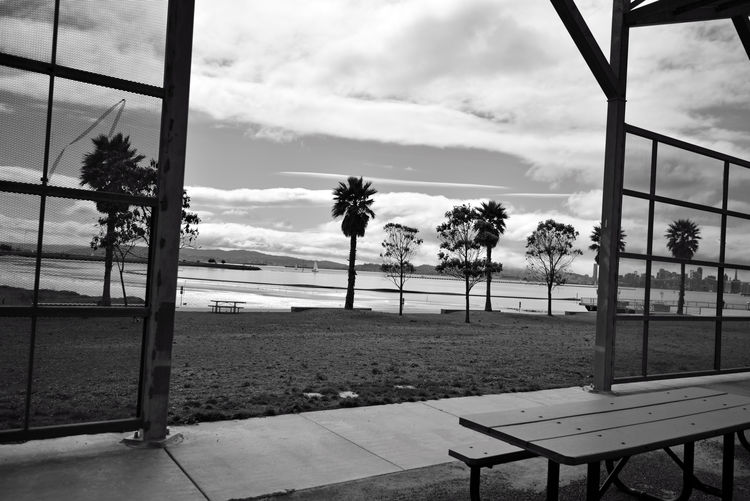 Middle Harbor's Picnic Concourse 2 Shoreline Park Port Of Oakland, Ca. Pt. Arnold Oakland Estuary Low Tide View Of The Bay Bnw_friday_eyeemchallenge Picnic Concourse Open Spaces Picnic Tables Trees Palm Trees Sailboats Band Stand Angles Angled Canopy Pattern Pieces Pattern Photography San Francisco Skyline Monochrome Photograhy Black & White Black & White Photography Black And White Black And White Collection  Monochrome