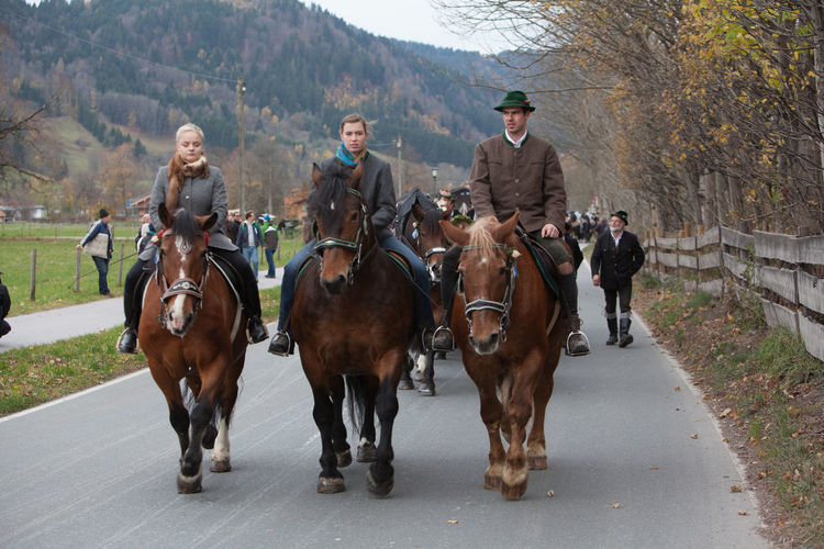 Schliersee, Bavaria - November 5, 2017: Every year on the 1st Sunday in November, the Idyllic Horse procession, named Leonhardi in Bavarian Schliersee takes place in commemoration of Patron St. Leonhard. In traditional clothing and decorated horse-drawn carriages horses and riders move to the church of St. Leonhard Bavaria Bavarian Lord God Event Leonhard Ride Schliersee Adult Adults Only Cultures Day Domestic Animals Full Length Group Of People Horse Livestock Looking At Camera Mammal Mature Adult Men Nature Outdoors Parade People Riding Togetherness Tree