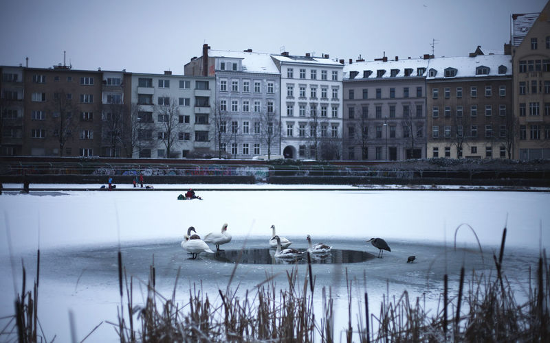 View of lake in city during winter