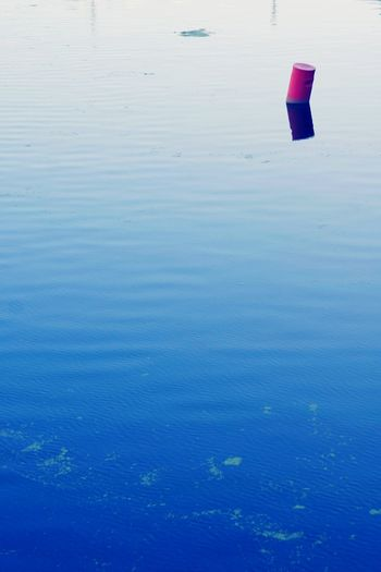 Buoy Red Buoy Lake River Blue One Nature Lonlyness EyeEm Best Shots Colors And Patterns