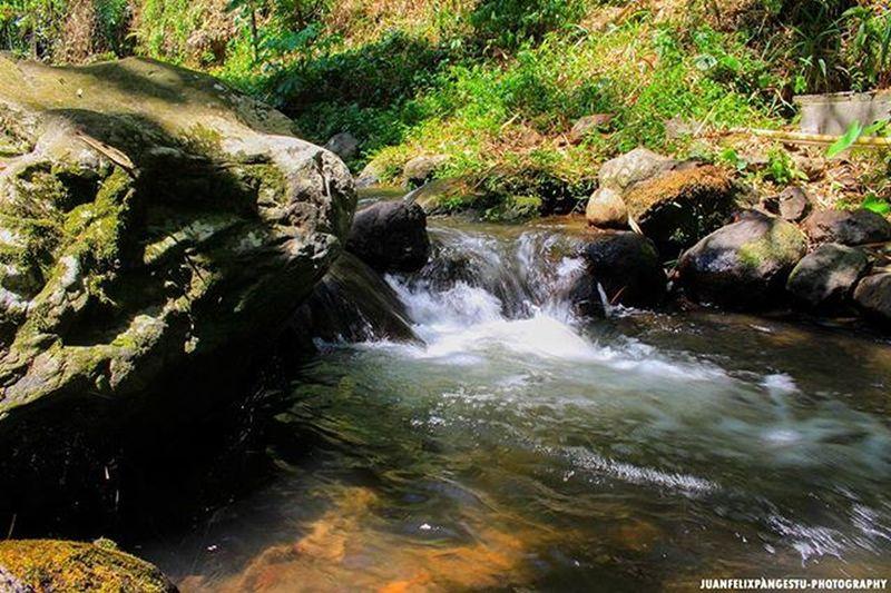 Lanscape Landscapephotography Canonclub Cabonindonesia PhotographyBanyuwangi Songgon Kabbanyuwangi Canon100D Zoomlens Lensakit Exploreindonesia Juanfelixphotography