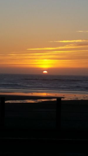 Sunset Sea Beauty In Nature Horizon Over Water Tranquility Beach Water Waldport Oregon pFiery Sunset Sundown Twilight Sky