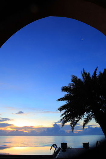 Silhouette palm trees against blue sky during sunset