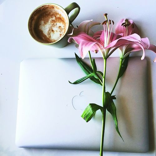 Lazy study days😴 Flower Studying Hotchocolate First Eyeem Photo