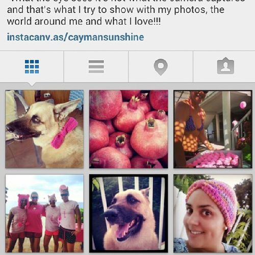 My Instagram Feed  is very Pink lately PinkOctober intagramfeed photos pics photooftheday