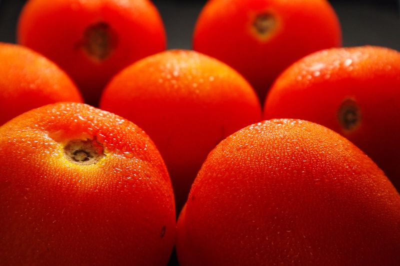 Tomatoes Healthy Eating Food And Drink Food Fruit Wellbeing Freshness Red Tomato Orange Color Group Of Objects Vibrant Color Focus On Foreground Still Life Close-up Vegetable My Best Photo