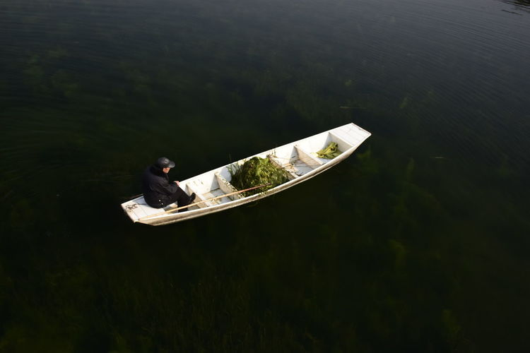 High Angle View Of Man With Seaweed In Boat Moving On Lake