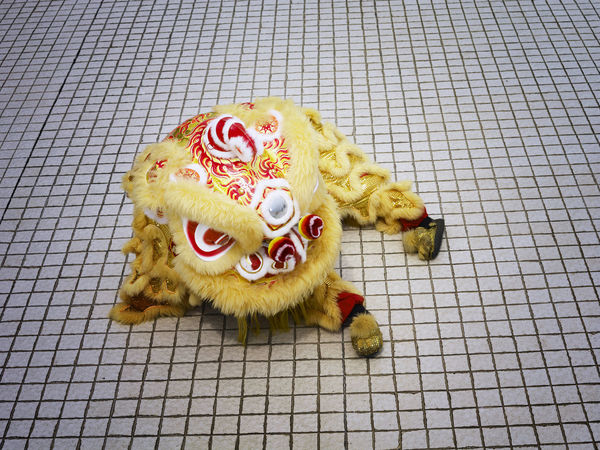 yellow lion dance at temple Celebration Gong Xi Fa Cai Good Luck Lion Dancers Lion Dance Performance Traditional Culture Chinese Lion Chinese New Year Costume Cultures Festive Lion Dance Opening Event Performance Religious  Special Occasion