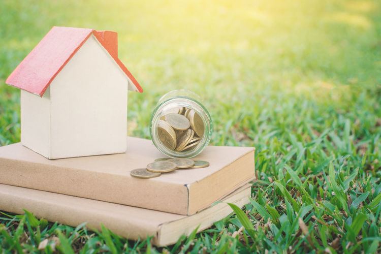 Close-up of home model with coins on grass