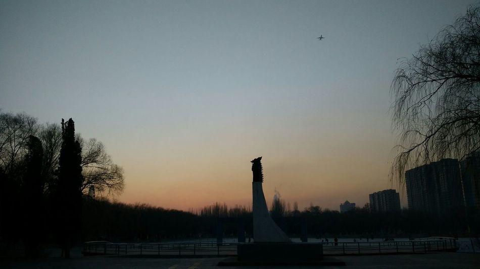 Park Sunset Winter