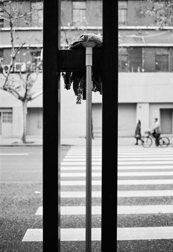 Architecture Day Built Structure Security Safety Focus On Foreground Protection Building Exterior Metal City Street No People Close-up Outdoors Window Lock Building Road Transportation Streetphotography Streetphoto_bw Blackandwhite Film Photography
