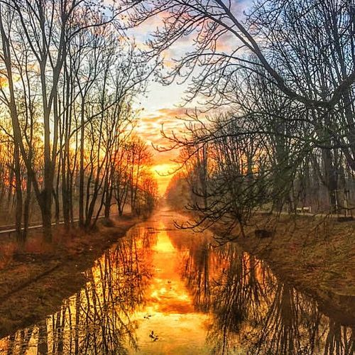 Snapseed Tadaa Community Reflection North Germany Nature Winter Colorful Colors Tranquil Scene Scenics Outdoors Sky Landscape Water Sunlight Sun Tranquility No People
