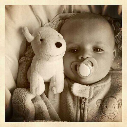 My Cute Nephew