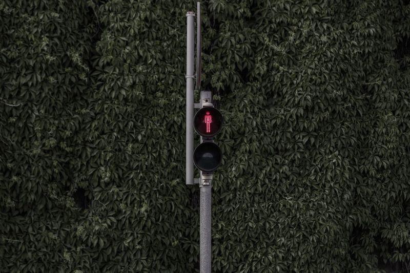 Stoplight against plants