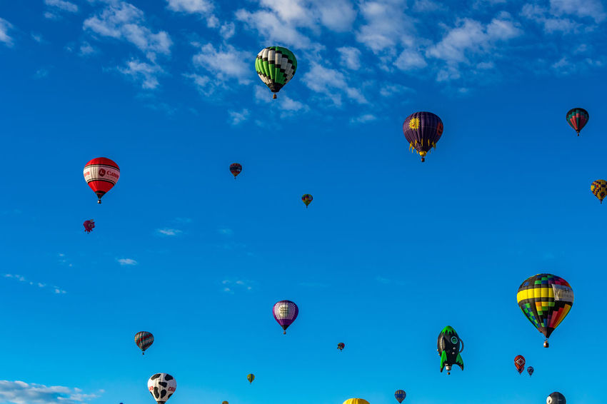 Adventure Ballooning Festival Blue Cloud - Sky Day Exhilaration Extreme Sports Flying Fun Hot Air Balloon Large Group Of People Leisure Activity Lifestyles Low Angle View Mid-air Multi Colored Nature Outdoors Parachute Paragliding Parasailing People Real People Sky Skydiving