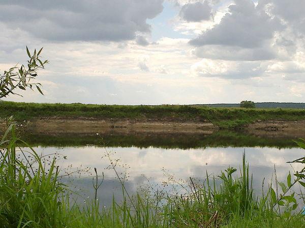The river Desna, Ukraine, very nice, nature, water