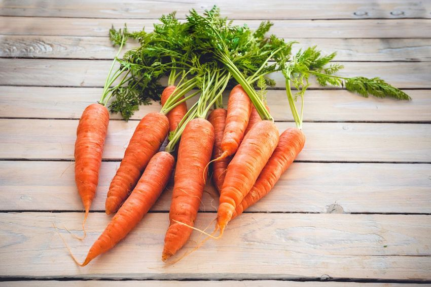 Carrots with tops on a wooden table Cooking Kitchen Carrot Tops Vegetables Carrot Orange Color High Angle View Rosemary Food And Drink Bunch Healthy Eating Studio Shot Day Indoors  Freshness Food No People Close-up