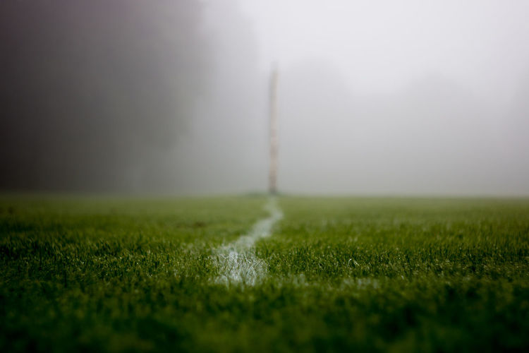 Beauty In Nature Day Field Fog Foggy Footpath Grass Grass Area Grassy Green Color Growth Horizon Over Land Landscape Nature No People Non-urban Scene Outdoors Remote Scenics Selective Focus Solitude Surface Level The Way Forward Tranquil Scene Tranquility