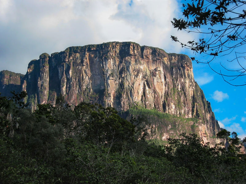 Mountain Landscape Outdoors No People Nature Tree Tepui Tepuy Table Mountain Venezuela Mesa Plateau