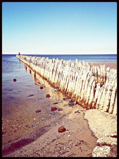 Lobach irishka Nature Enjoying The Sun Water_collection EyeEm Nature Lover
