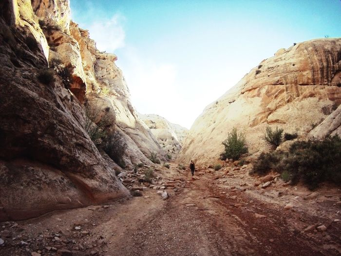 Capitol Reef Nature USA Capitolreef Nationalpark Beauty In Nature Rock Formation Outdoors