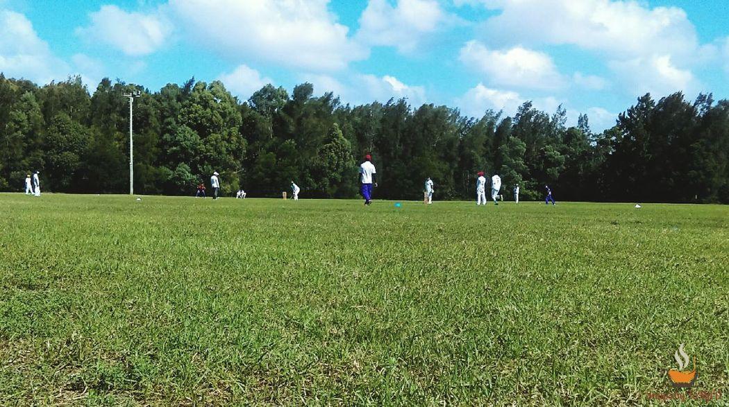Sky Tree Playing Field Outdoors Match - Sport Cricket Field Cricket Match