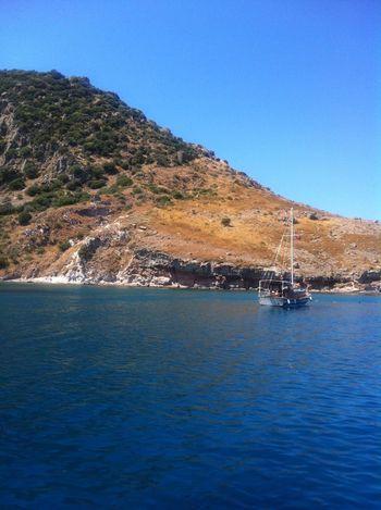 Bodrum Turgutreis  Turkey Boat Sea