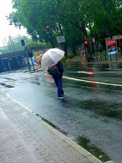 Portrait From Behind Portrait Photography Portrait Of A Man  People Photography Street Life Street Photography Street Photo Rainy Day Rain Road City Life City Street Showcase July Umbrella Man With Umbrella Walking Alone... My City Summertime Trees People_collection Galaxy S7 Edge People On The Street